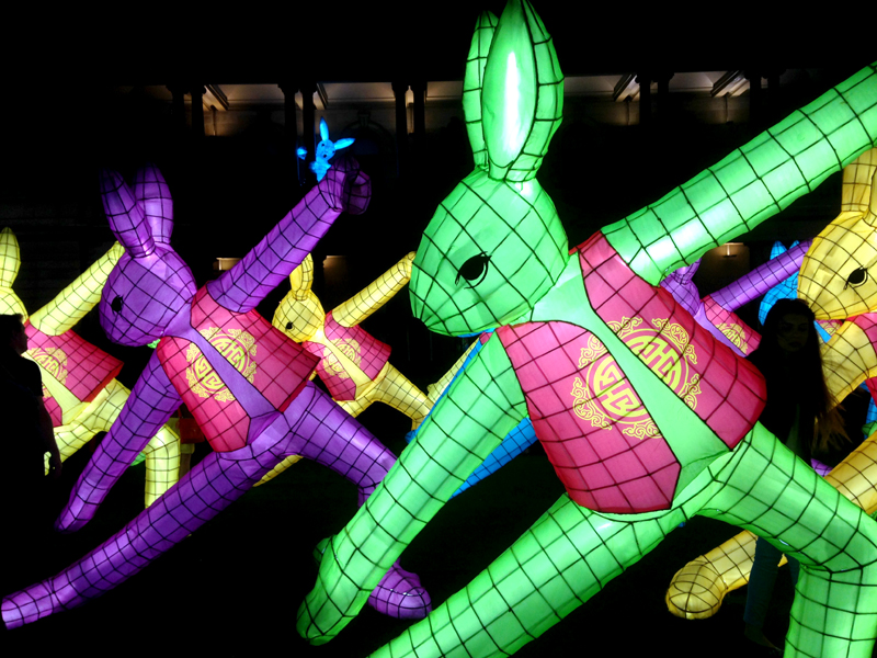 Rabbit Lantern installation by Claudia Chan Shaw