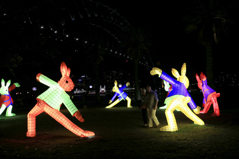 Rabbit lantern by Claudia Chan Shaw. Sydney Chinese New Year 2017. Photo by Damian Shaw for City of Sydney