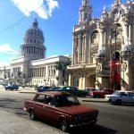 Havana. Photo courtesy Liz Gibson