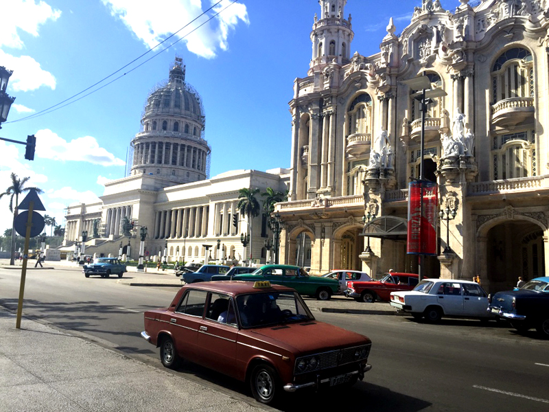 Havana. Photo courtesy Liz Gibson
